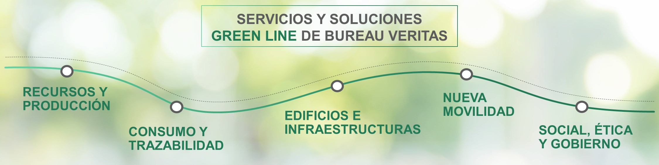 Green Line BV Colombia